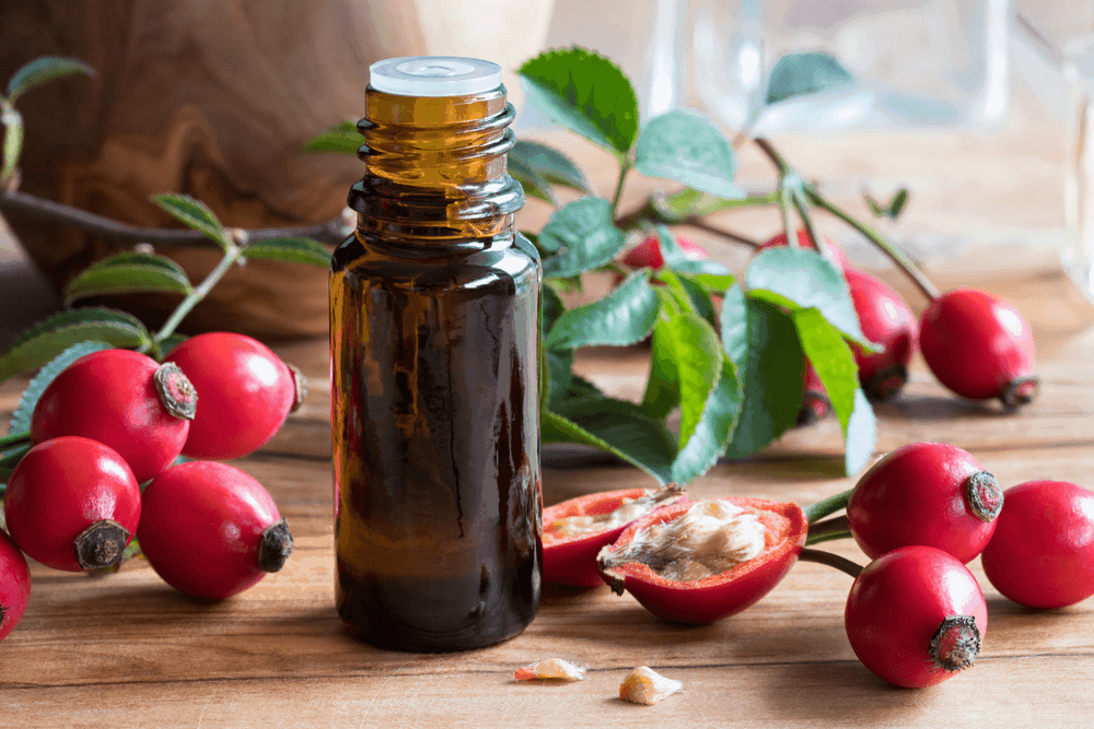 Rosehip Oil For Eczema: Is Rosehip Oil Good For Eczema